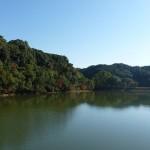平和台公園池