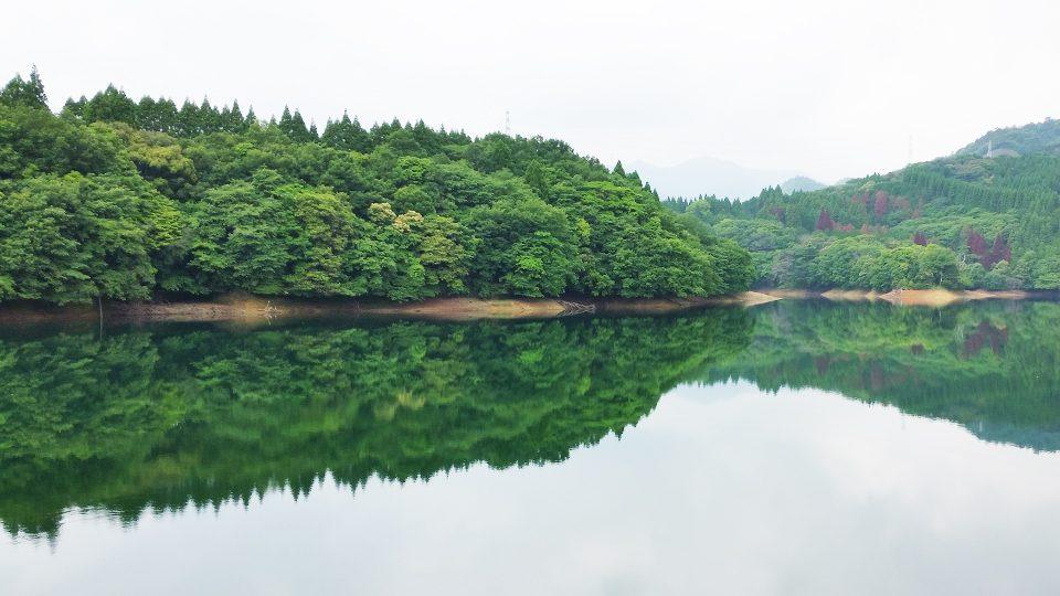 ボートから見える湖の風景