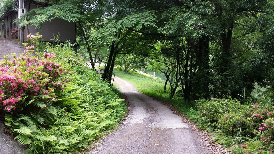 傾斜のある坂道