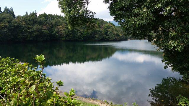 秋の籾木池