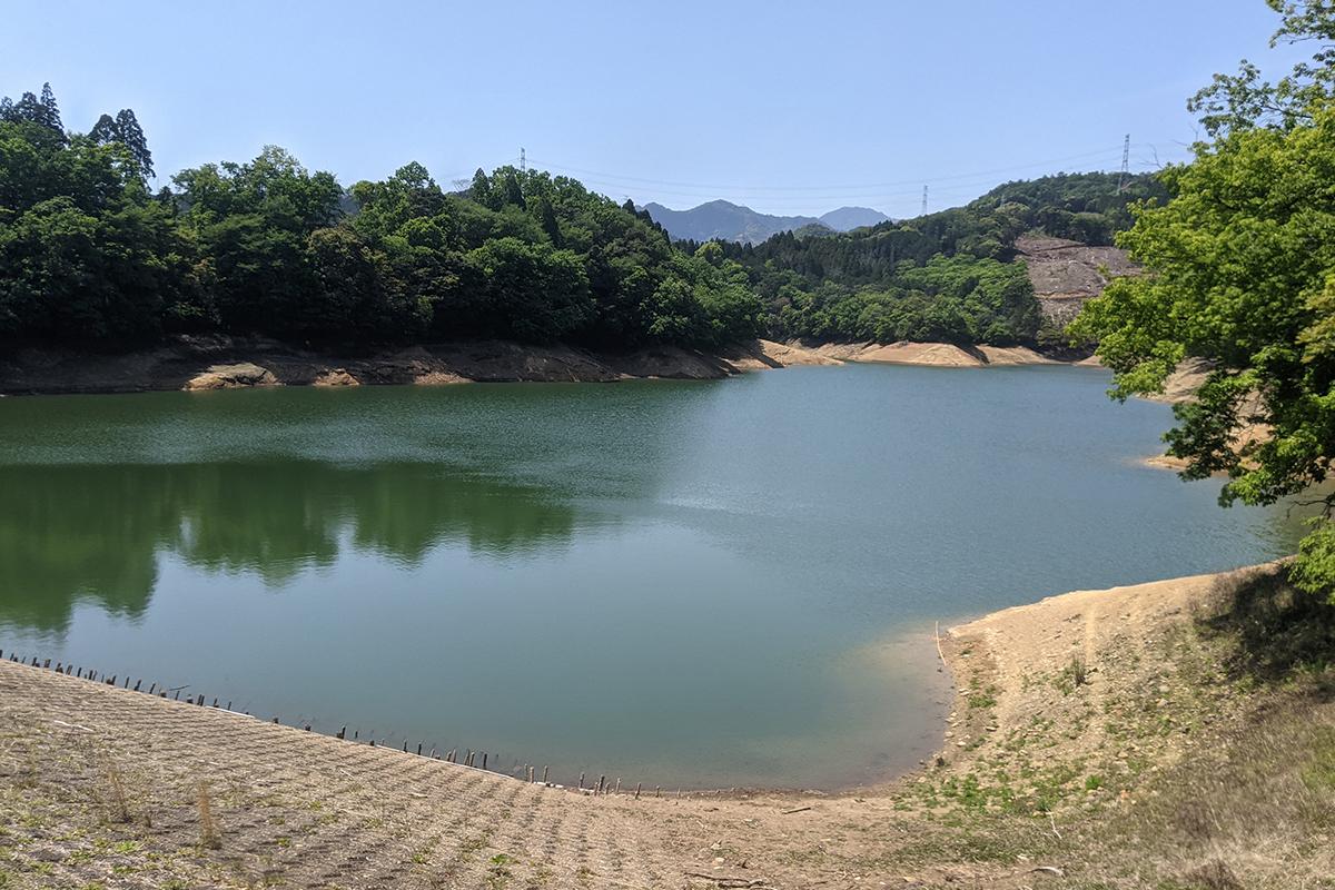 初夏の籾木池