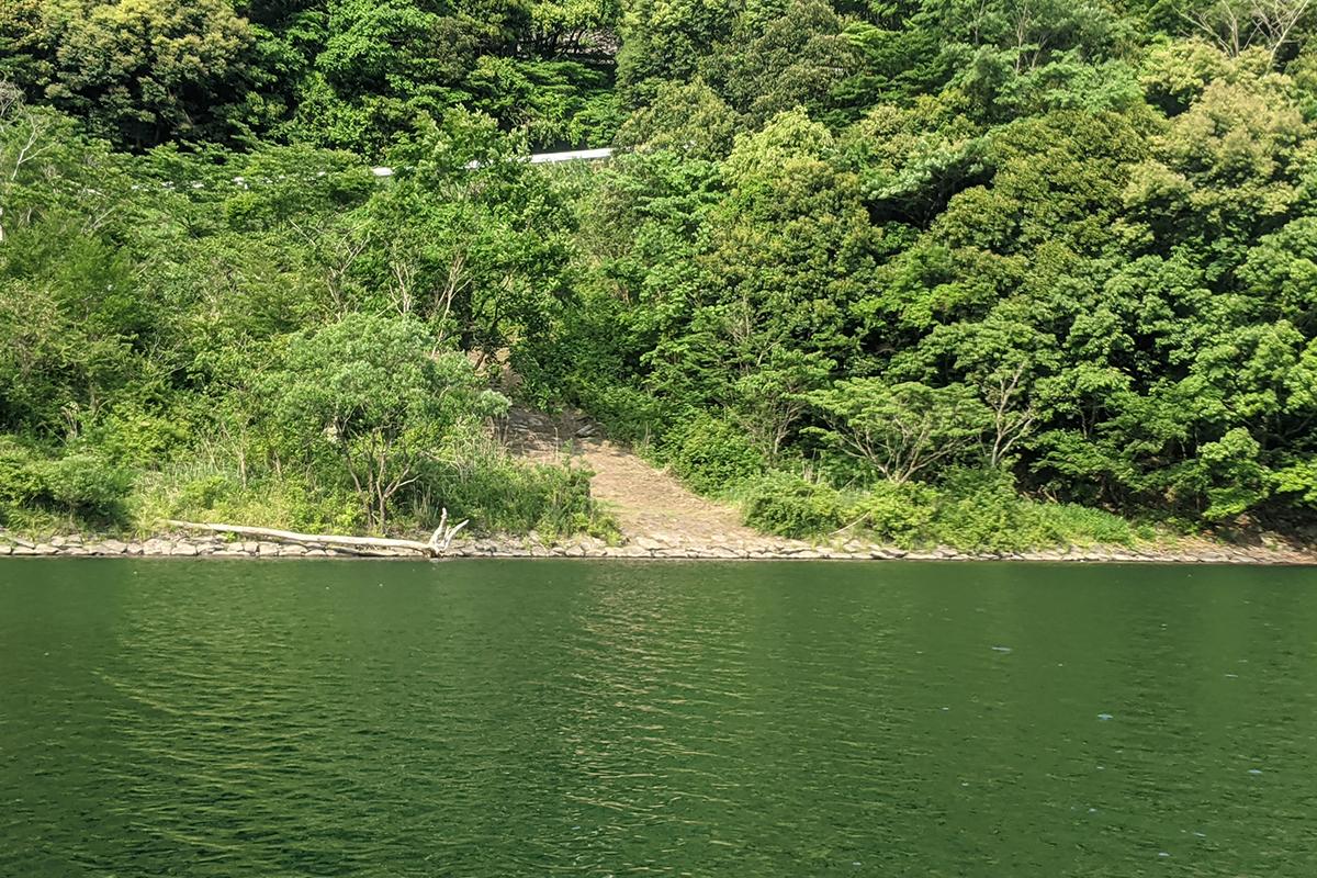 広渡ダムの陸っぱりポイント