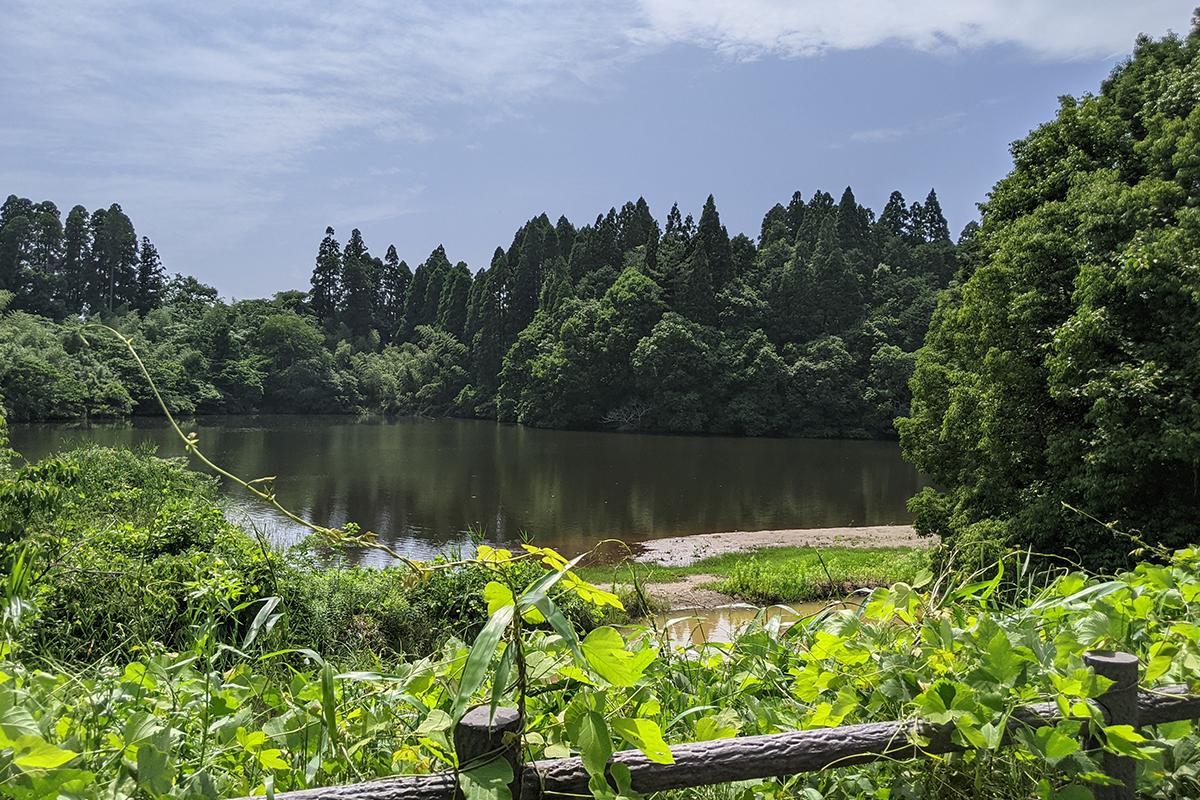 中池の陸っぱりポイント