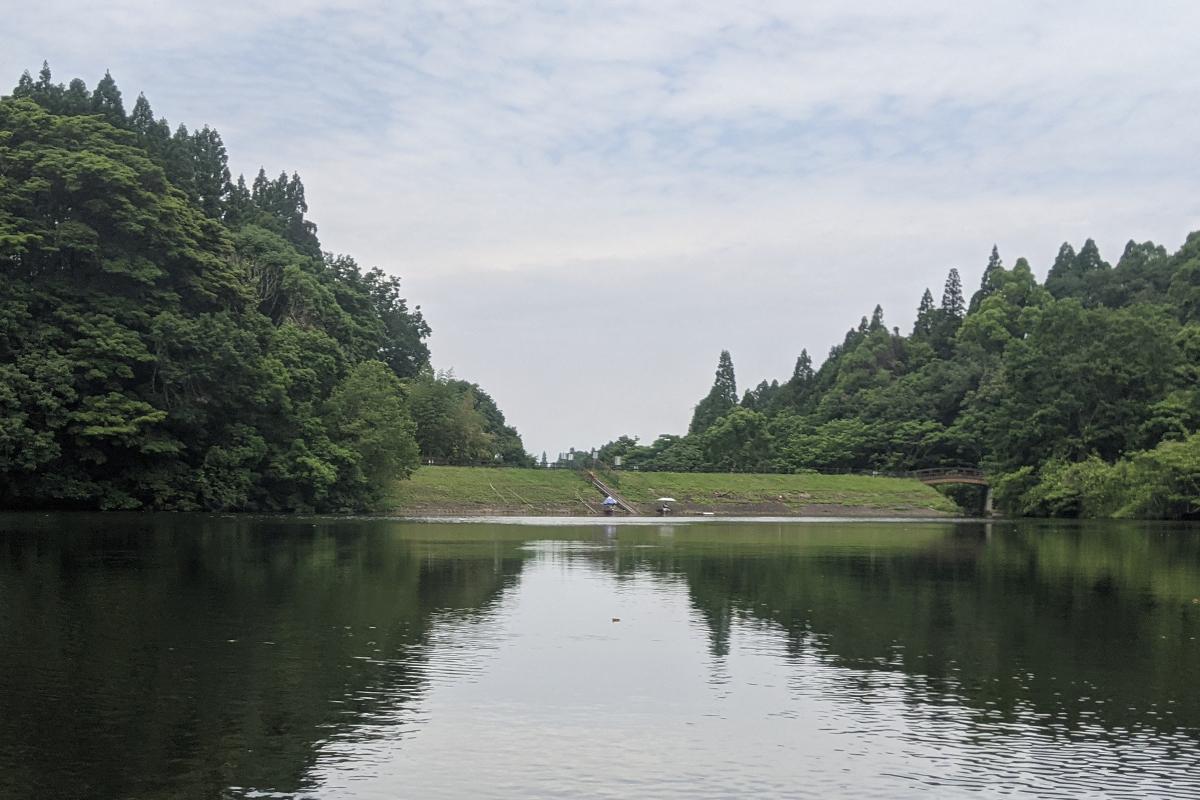 中池の釣りメインエリア